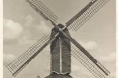 1936-Voerman-ir.-W.
