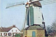Kleurenfoto-waarschijnlijk-eind-jaren-60-Vereniging-de-Hollandse-Molen